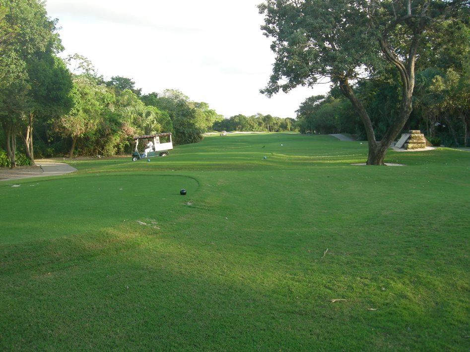 playacar-golf-1