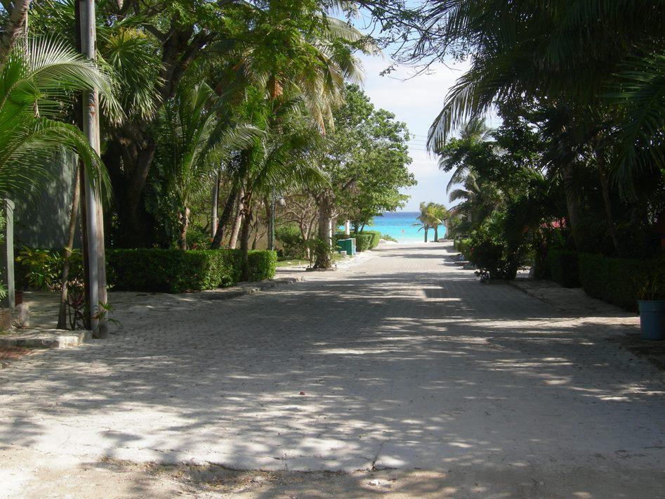 playacar-street-view